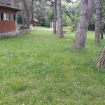 Jelenec - kosenie trávy